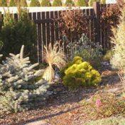 realizace-zahrad-3