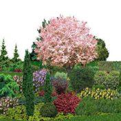 zahrada-3D-1