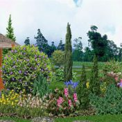 zahrada-3D-4